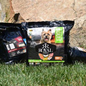 غذای خشک سگ بالغ نژاد کوچک رویال فید وزن 3 کیلوگرم | پرشین پت لند